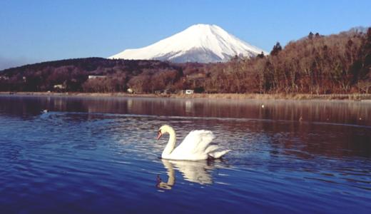 大石田郵便局の風景印