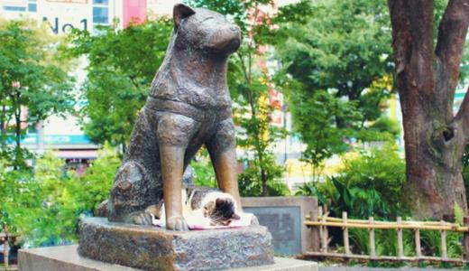 渋谷郵便局の風景印