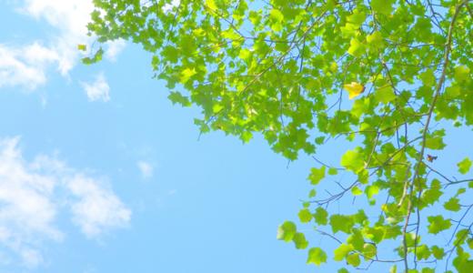 旭川緑が丘郵便局の風景印