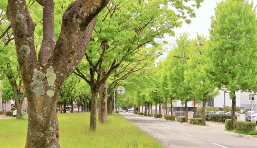 洋光台駅前郵便局の風景印